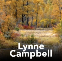 LynneCampbell